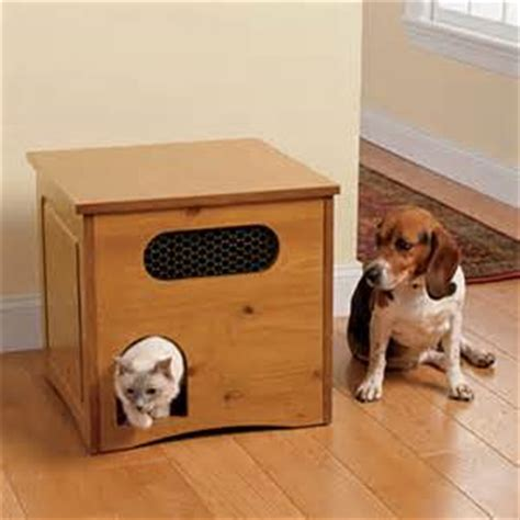 dog proofing house dog proof cat feeding station dog breeds picture