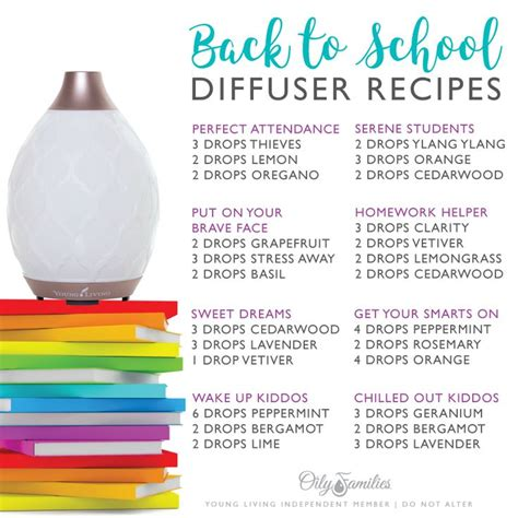 Diffuer Recipes For Detox by The 25 Best Living Focus Ideas On