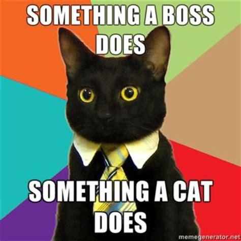 Meme Business Cat - image 100100 business cat know your meme