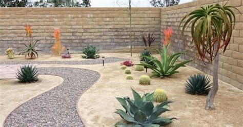 backyard desert landscaping ideas desert landscape ideas desert landscaping ideas rock pathway in xeroscape garden
