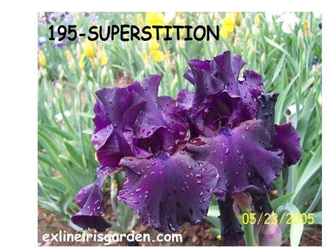 Olive Garden Superstition Springs by Superstition Exline Iris Garden