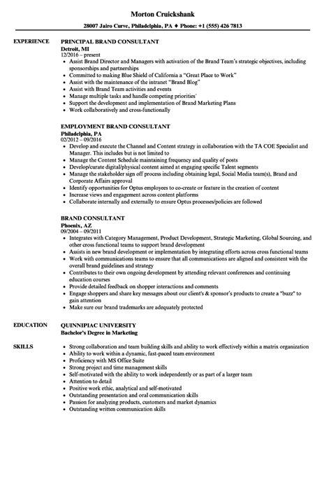 Brand Consultant Sle Resume by Brand Consultant Resume Sles Velvet