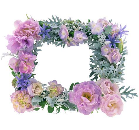 imagenes a flores marcos para fotos de flores hermosas