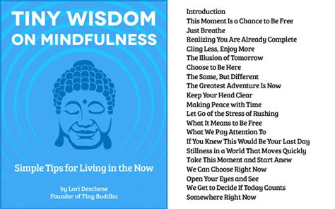 happiness wisdom series ebook tiny wisdom buy one give one ebook sale