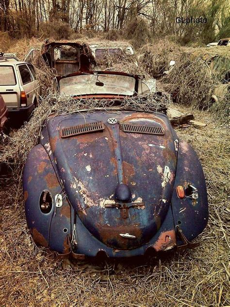 images  lost   woods weeds barn  time  pinterest plymouth cars