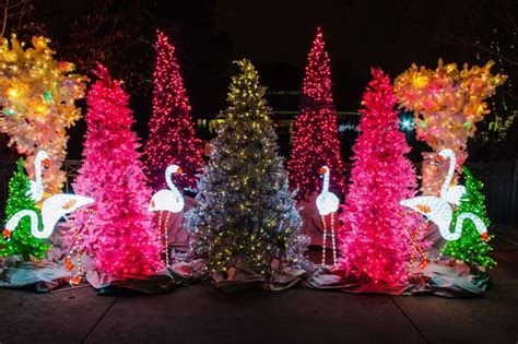 christmas light displays in st louis the best christmas light displays in st louis