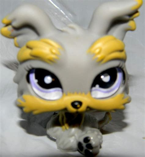 littlest pet shop yorkie details about 1988 honda zb50 shops and yorkie