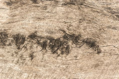 corel wood pattern corel wood pattern 187 designtube creative design content