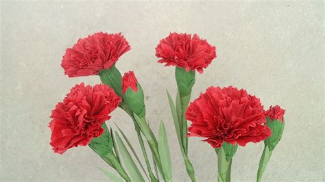 How To Make Paper Carnations - how to make carnation paper flower from crepe paper