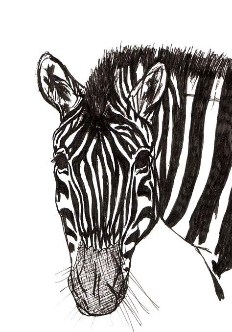 Zebra Penciltic Fineliner 0 4 zebra fineliner by hideous1984 on deviantart