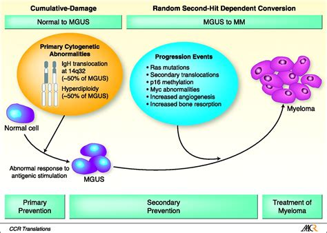 m protein mgus diagnosis mgus diagnosis