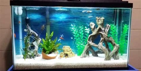 best fan for aquarium 100 28 gallon aquarium fish tank jbj usa aquarium