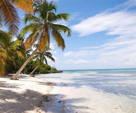 florida beach hotel vacations florida beach resorts