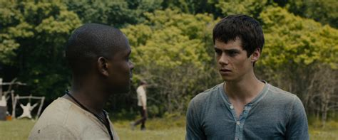 download film maze runner mp4 download the maze runner 2014 yify torrent for 1080p mp4