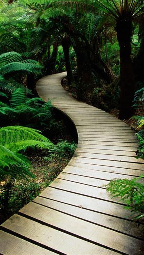 images  beautiful pathways  pinterest