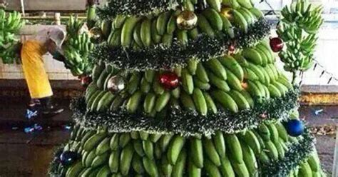 jamaican christmas tree jamaica pinterest christmas