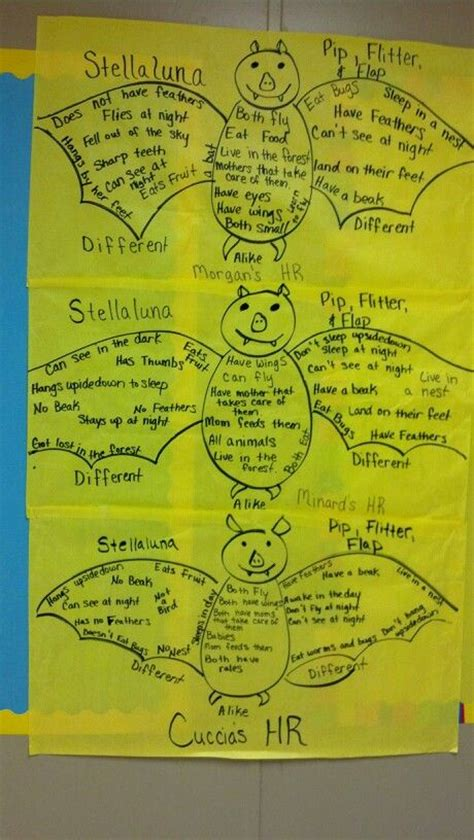 stellaluna venn diagram 17 best images about stellaluna on bats charts and book report projects