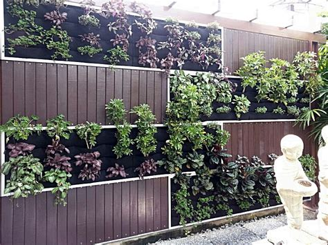 Vertical Garden Panel Vertical Garden By The Pool Lush Eco