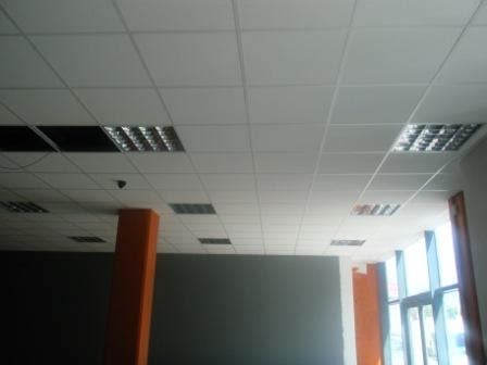 view pictures    dynamic ceilings