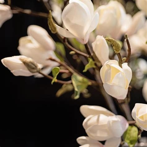 luxury artificial white magnolia branch amaranthine