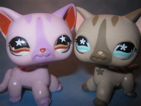 lps dogs littlest pet shop cats 933 and 468 littlest pet shop photo 33593076 fanpop
