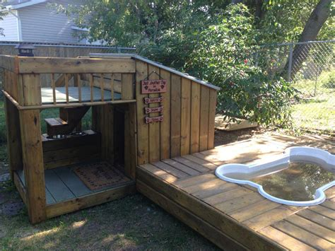 dog house with pool thursday spotlight lisa schaldemose confessions of a rescue mom