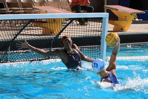 water polo goalkeeper books s water polo goalkeeper finds success balancing