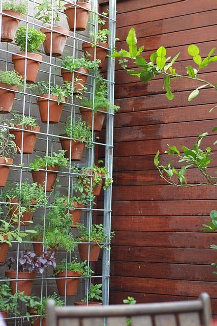 best 25 patio herb gardens ideas on container