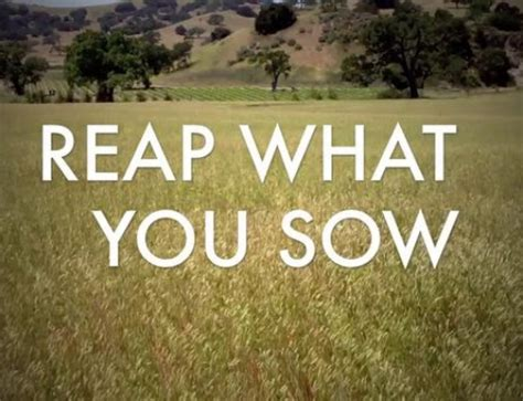 You Reap What You Sow Essay by Lean Forward The Fearless Hustle