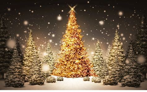 images  decorated christmas trees full desktop