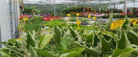 center casa villorba linea verde villorba per il giardino l orto e la casa