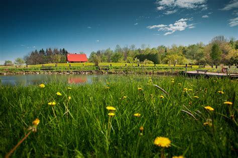 download wallpaper tentang alam 1001 wallpaper gambar alam hijau