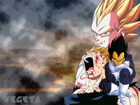 Home Wall by Vegeta Prince Vegeta Wallpaper 30750543 Fanpop