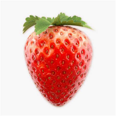 strawberry 3 3d model max obj fbx cgtrader