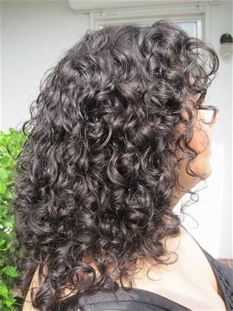 salt and pepper curly hairstyles 1000 images about curly gray hair on pinterest