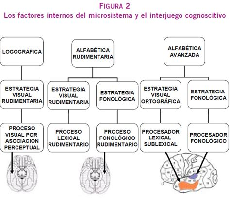 modelo de certificado de convivencia modelos de curriculum modelo de certificado de convivencia modelos de curriculum