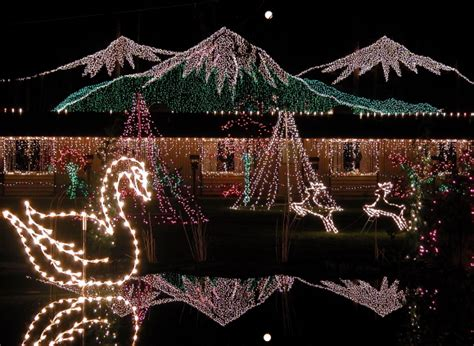 one million christmas lights simplify christmas