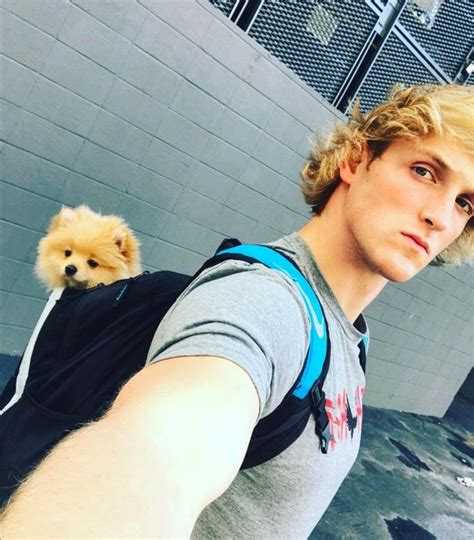 logan paul puppy 20 best ideas about logan paul on kong kong savages and youtubers
