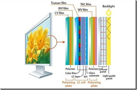 section screen difference between led lcd plasma tvs and which one to buy