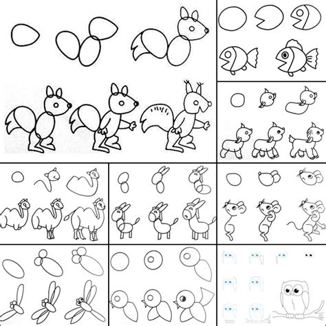 Drawing Step By Step Easy Animals by Wonderful Idea For Drawing Easy Animal Figures