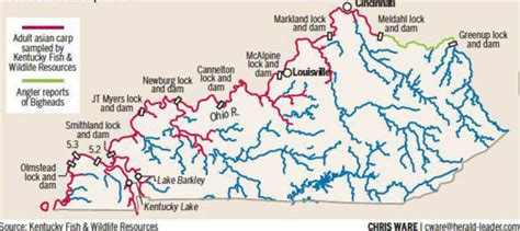 kentucky map with rivers and lakes thelevisalazer asian carp are threatening fisheries