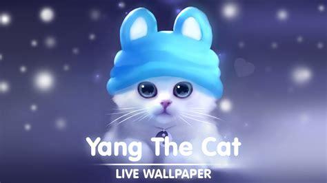cat  wallpaper youtube