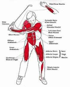 golf swing exercise 1000 images about golf fitness on pinterest golf