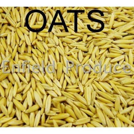 whole grains for sale whole oats grain for sale shop or sydney store