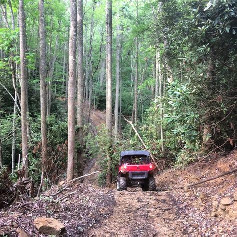hatfield mccoy trails cabins