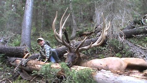 Colorado Records 2017 Bull Elk Taken In The State Of Utah In The Year Of