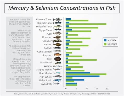 Selenium And Mercury Detox by Worried About Mercury In Fish Read This David Krantz