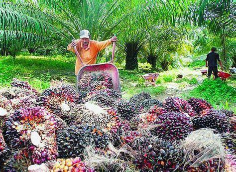 Eksport Minyak Kelapa Sawit kajian tempatan tahun 6 jenis jenis perindustrian di malaysia