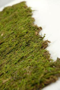 Moss Mat Roll by Rustic Wedding Shower Ideas On