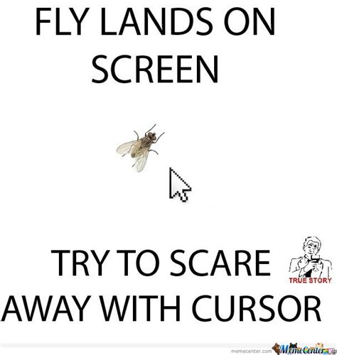Fly Meme - fly lands on screen try to scare away with cursor by